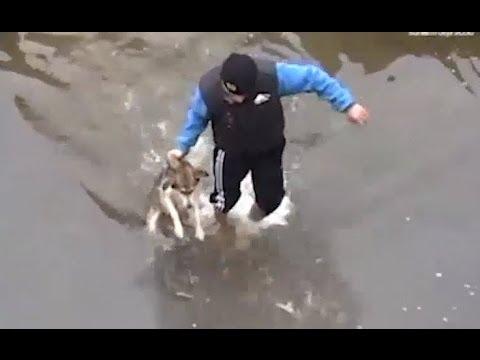 Dwóch mężczyzn uratowało psa! Zobaczcie jak im się odpłacił!